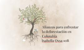Alianzas para enfrentar la deforestación en Colombia
