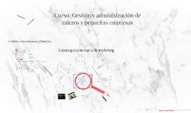Curso: Gestión y administración de micros y pequeñas empresa