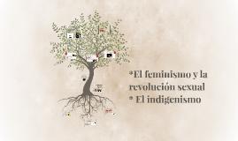 *El femenismo y la revolucion sexual