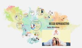 RIESGO REPRODUCTIVO