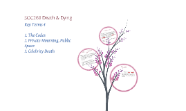 Death & Dying Key Terms 4