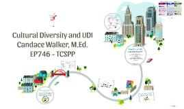 Cultural Diversity and UDI