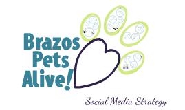 Brazos Pets Alive