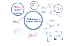 Copy of FLUIDOTERAPIA EN PEQUEÑOS ANIMALES