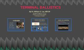 Copy of Terminal Ballistics