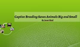 Captive Breeding Saves Animals Big and Small