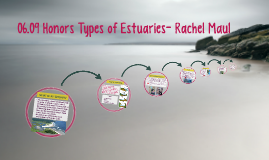 06.09 Honors—Types of Estuaries