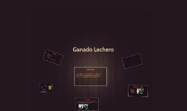 Copy of ganado lechero