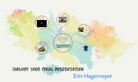 Prezzie presentations