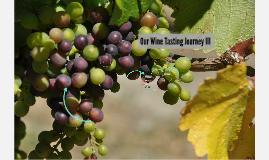 Our Wine Tasting Journey III