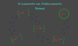 Cruzamento em Melhoramento Animal