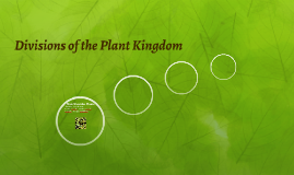 Divisions of the Plant Kingdom