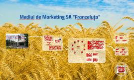 "Copy of Mediul de Marketing SA ""Franzeluța"""