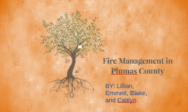 Fire Management in Plumas County