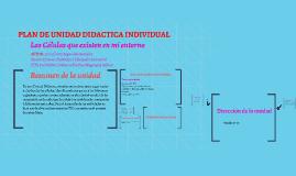PLAN DE UNIDAD DIDACTICA INDIVIDUAL
