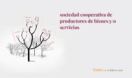 Copy of sociedad cooperativa de productores de bienes y/o servicios