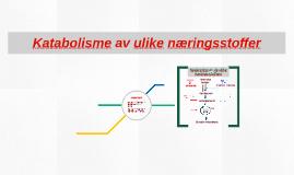 Katabolisme av ulike næringsstoffer
