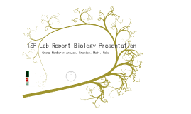 Grade 12 Biology Lab Presentation