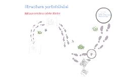Copy of Portofoliu , Modulul A