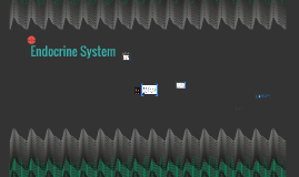 Copy of Endocrine System