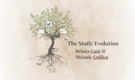 The Sloth: Evolution
