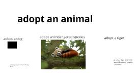 adopt a animal