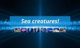 sea creatures prezi