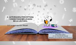La percepción visual en la lectura.
