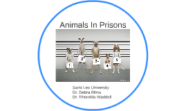 Animals In Prisons