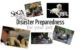 Pet Disaster Preparedness - Hurricane Expo 2012