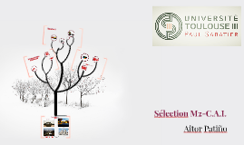 Selection M2-C.A.I.