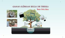 CASOS CLÍNICOS ERIZO DE TIERRA