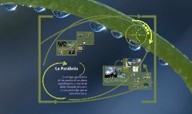 Parábola by Esquivel B.