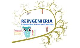 PROCESO DE REINGENIERIA