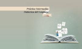 Práctica Intermedia; Didáctica del Lenguaje.