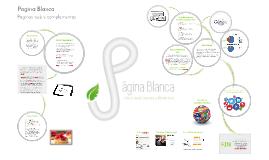 Pagina Blanca  /Diseño web y complementos