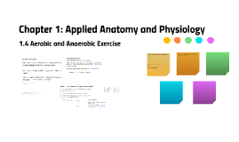 1.4 Aerobic and Anaerobic Exercise