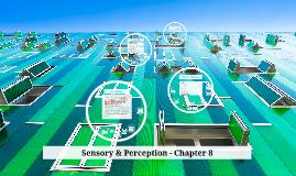 Sensory & Perception - Chapter 8