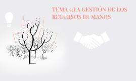 TEMA 5: CLASES DE EMPRESAS