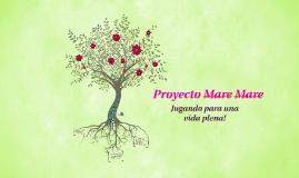 Proyecto Mare Mare