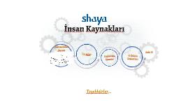 Copy of Shaya İnsan Kaynakları