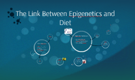 Copy of The Link Between Epigenetics and Diet