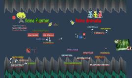 Reinos Animalia y Plantae
