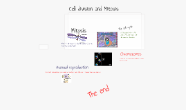 Copy of Cell division and mitosis!