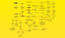 Copy of Lacan
