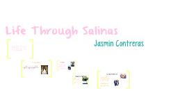 Life Through Salinas