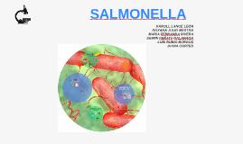 Copy of SALMONELLA