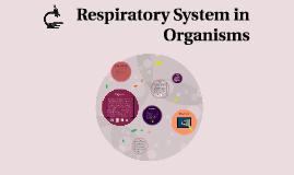 Respiratory System in Organisms