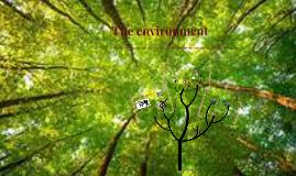 The enviroment