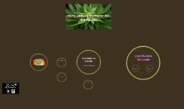 La Marijuana: Une Plante de plusiers siècles